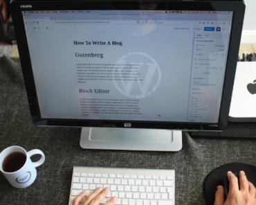 WordPress Developer Plugins